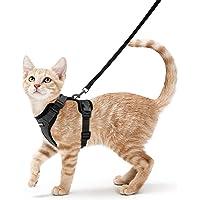rabbitgoo Uprząż dla kota i smycz do chodzenia, zapobiegające ucieczce, miękka regulowana uprząż kamizelki dla kotów i…