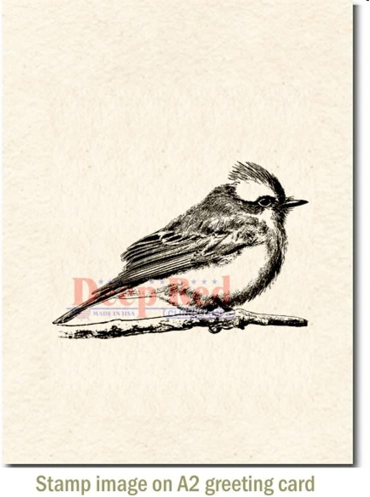 Deep Red Vermilion Flycatcher Rubber Cling Stamp