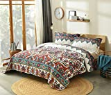 DaDa Bedding Bohemian Paisley Bedspread - Earthy Meadow Quilted Coverlet Set - Multi-Colorful Floral Print - King - 3-Pieces