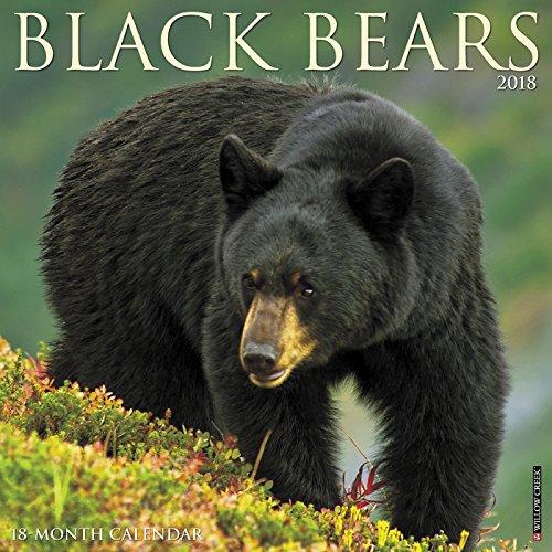 Black Bears 2018 Calendar (Bear Calendar)