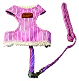 Creative Motion Stripe Dog Cloth with a Leash, Pink