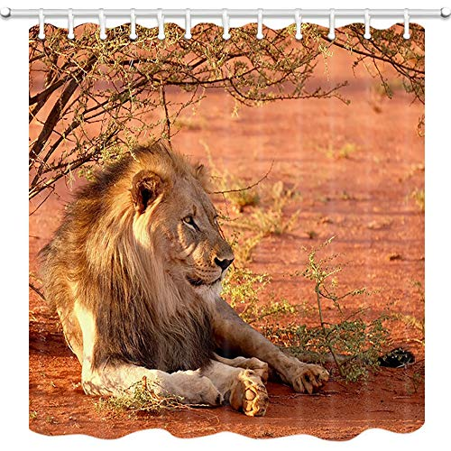 NYMB African Wild Animal Lion Shower Curtain, Safari Animals Lion Lying in Wood BranchesBath Curtain, Polyester Fabric Shower Curtains for Bathroom, 69X70in, Hooks Included (Multi6)