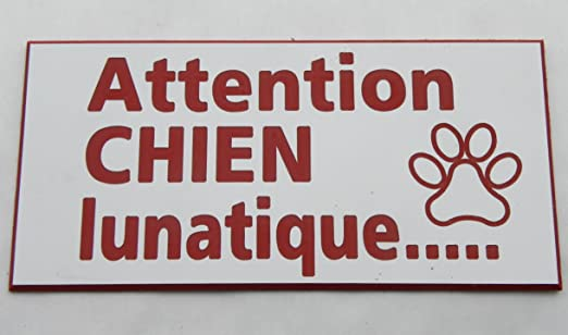 plaque gravée ATTENTION AUX CHIENS FT 150 X 75 MM