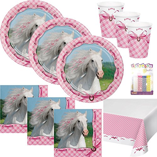 Heart My Horse Party Supplies Pack Serves 16: Dinner Plates, Luncheon Napkins, Cups, Table Cover and Birthday Candles