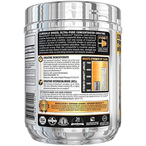 Amazon com: MuscleTech Fruit Punch Fusion 50 Servings Creatine
