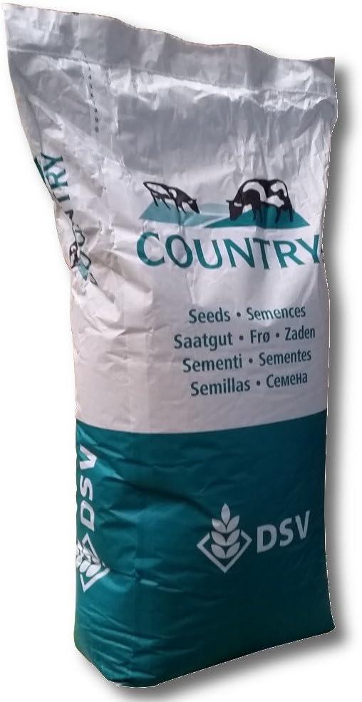 Dsv Country Energy 2020 25 kg Tarde con Trébol Promedio Weidenutzung Sauce Semillas