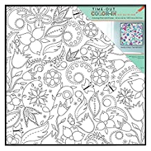 MCS Time-Out Color-In Framed Adult Coloring Page with Floral Whimsy Design, Includes Format Frame, 12 by 12-Inch