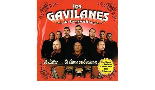 Un Vestido Bonito by Los Gavilanes De La Cumbia on Amazon Music - Amazon.com