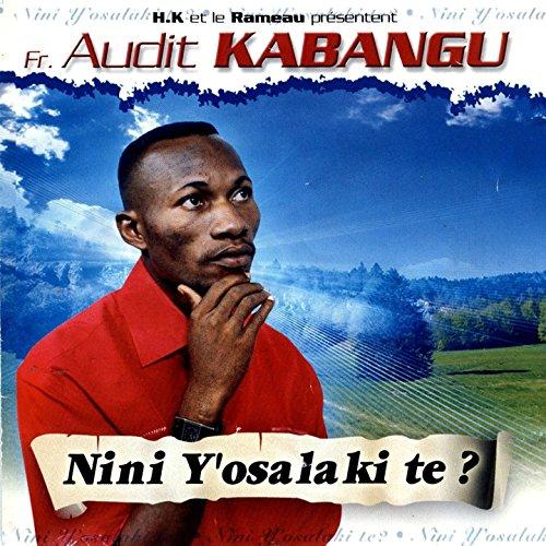 album de audit kabangu