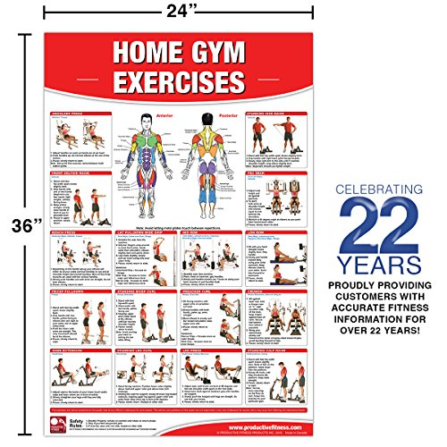 get home gym exercises laminated poster chart home gym chart home