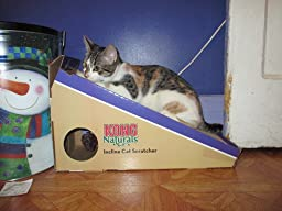 Amazon.com : KONG Naturals Incline Scratcher Cat Toy : Scratching ...