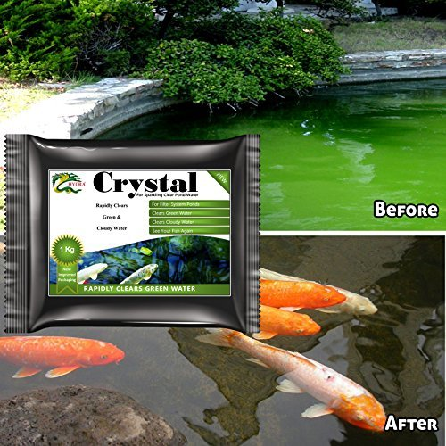 GREEN WATER REMOVER HYDRA CRYSTAL 1KG TREATS 10,000L- USE WITH EXTERIOR FILTER BOX by HYDRA (Hydra Crystal compare prices)