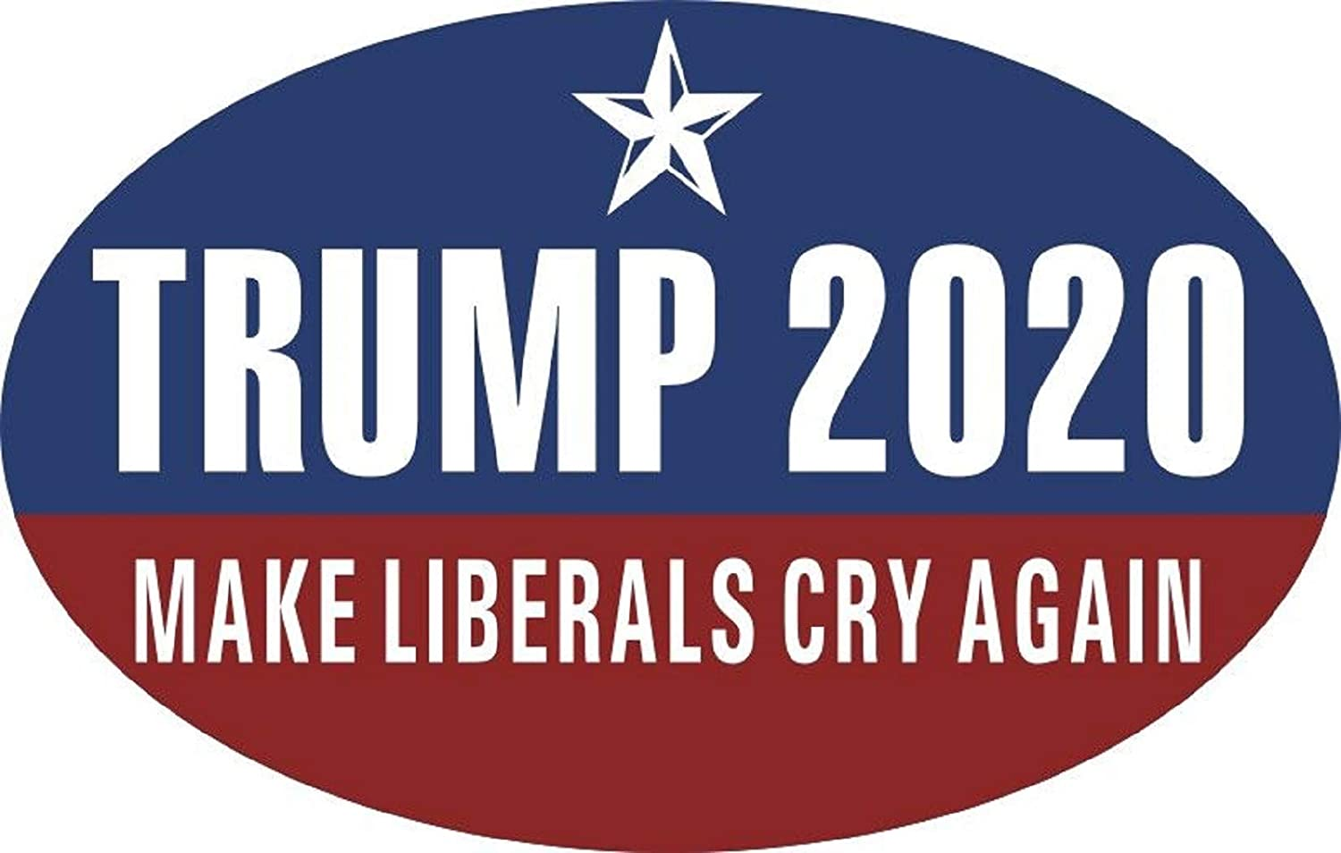 tunfo 2 PCS 2020 Trump Bumper Stickers and Biden Harris 2020 for President Election Car Decal Vehicle Trucks Decor Oval 3x5