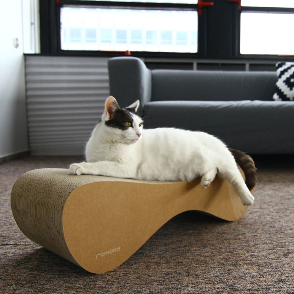 Elegante Cat Scratcher/cama/Toy Vigo marrón: Amazon.es ...