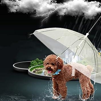 Sportsmann Paraguas impermeable transparente para mascotas con soporte para perros pequeños, medianos y gatos,