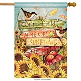 Cheap Signs of Fall House Flag Sunflower Autumn Apples Birds Banner 28″ x 40″