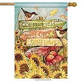 Cheap Signs of Fall House Flag Sunflower Autumn Apples Birds Banner 28″ x 40″