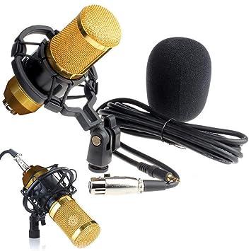 Amazon.com: Chranto lucky 7 Condensador Pro Audio BM800 ...