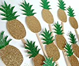 Various Fun Designs of Tropical Coconuts/Hibiscus Cupcake Toppers for Birthday/Events/Party sets of 12… (Pineapple)