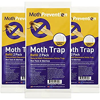 Amazon Com West Bay Retail Powerful Moth Trap