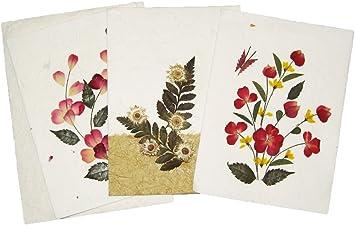 Awesome Amazon Com Handmade Pressed Flower Greeting Card Designs Make Funny Birthday Cards Online Alyptdamsfinfo