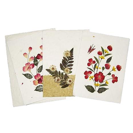 Amazoncom Handmade Pressed Flower Greeting Card Designs Make
