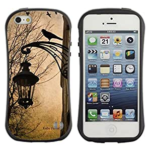 LASTONE PHONE CASE / Suave Silicona Caso Carcasa de Caucho Funda para Apple Iphone 5 / 5S / Lamp Spring Autumn Fall Crow Street
