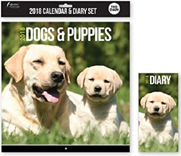 2018 calendar diary cats kittens dogs puppies christmas