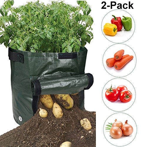 AOSHR Potato Grow Bags, Durable 2 Pack 7 Gallon Potato Planter with Access Flap, Raised Garden Bed for Planting Vegetables, Taro, Radish, Carrots, Onions