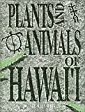 Plants and Animals of Hawaii, Susan Scott, 0935848924