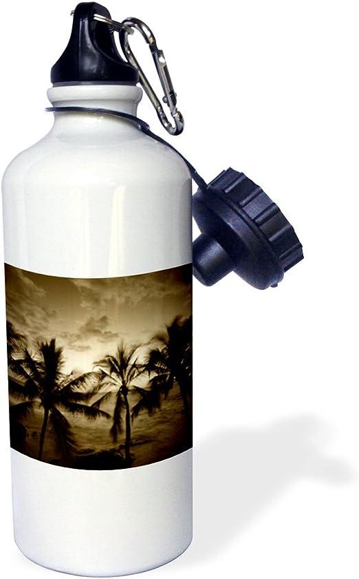 Amazon Com 3drose Beach Palm Trees Kona Hawaii Usa Us12 Swe0039 Stuart Westmorland Sports Water Bottle 21 Oz White Kitchen Dining