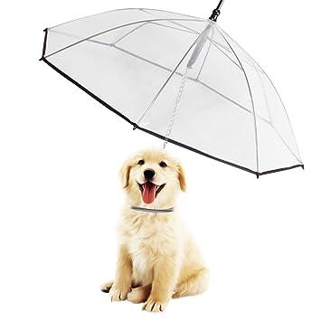 Morjava W555, paraguas con correa para mascota, perro, transparente y resistente al agua