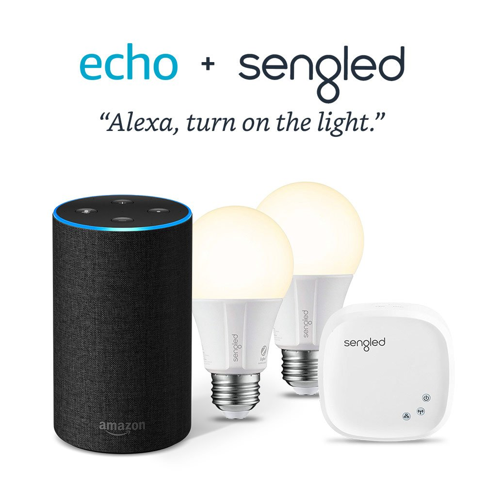 Echo + Free Lighting Kit