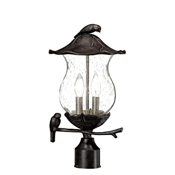 Acclaim 7567BC/SD Avian Collection 2 Light Post Mount Outdoor Light Fixture,  Black