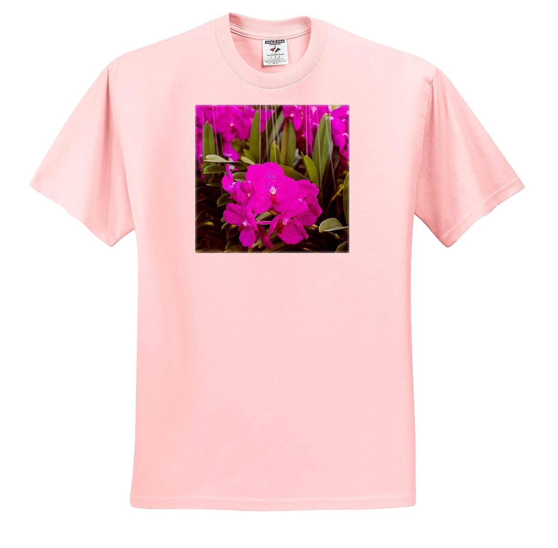 Flowers Thailand Adult T-Shirt XL Flowers on Display Bangkok Street Flower Market ts/_312837 3dRose Danita Delimont
