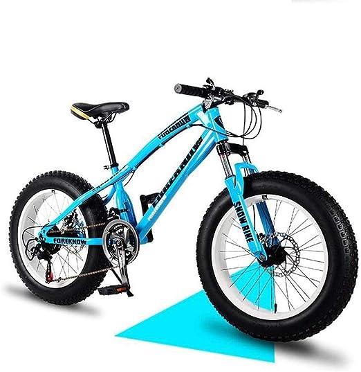 LP-LLL Bicicleta de montaña: Bicicleta de Playa, Freno de Doble ...
