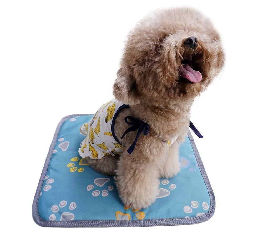 Pet Heating Pad,Dog Cat Electric Heating Pad Indoor, Pet Warming Mat for Dogs and Cats with Waterproof Fabric Chew Resistant Cord and Overheat Predection
