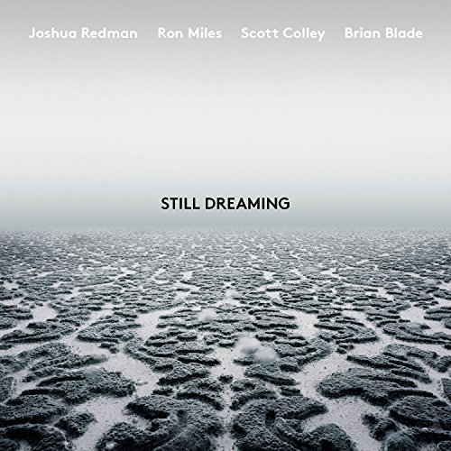 Still Dreaming (feat. Ron Miles, Scott Colley & Brian ()