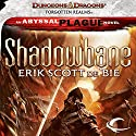 Shadowbane: Eye of Justice Audiobook by Erik Scott de Bie Narrated by Rupert Degas