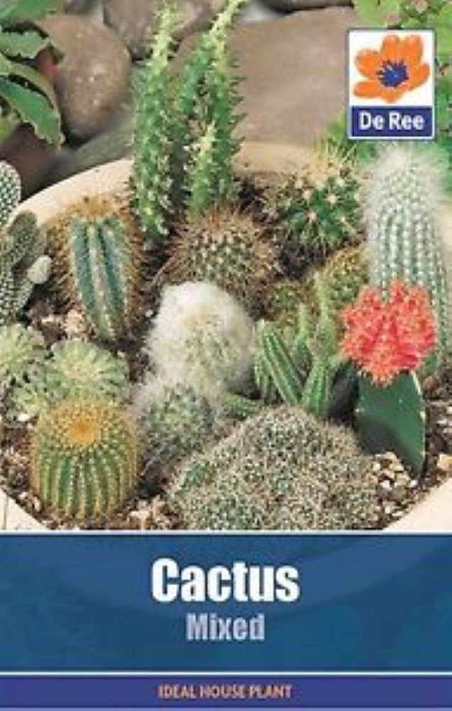 2 packets of Cactus Mixed garden seeds, approximately 30 seeds per packet De Ree