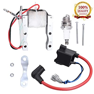 High Performance CDI Ignition Coil + Magneto Coil + Spark Plug for 49cc-80cc 2-Stroke Engine Motorized Bicycle Bike: Automotive