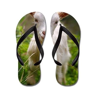 Baby Goat - Flip Flops Funny Thong Sandals Beach Sandals