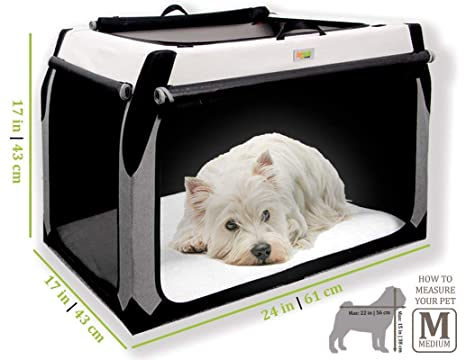 DogGoods - Cesta Plegable para Perro para Interiores y Exteriores ...