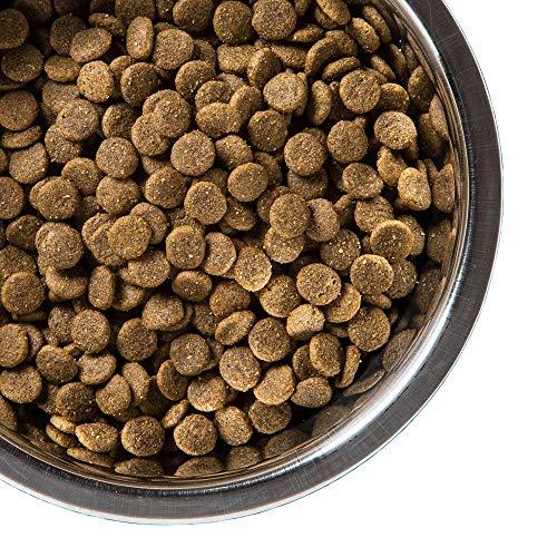 Large Product Image of Amazon Brand - Solimo Ultra-Premium Dry Dog Food, No Added Grain, Beef & Sweet Potato Recipe. 5 Lb. Bag