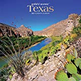 Texas Wild & Scenic 2021 12 x 12 Inch Monthly Square Wall Calendar, USA United States of America Southwest State Nature
