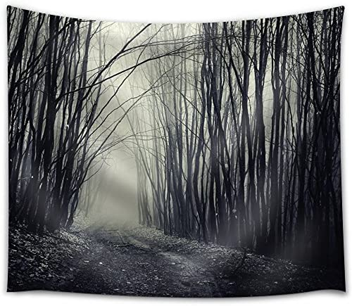 Path Passing Through a Dark Forest with Fog