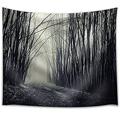 That You Will Love, Delightful Picture, Path Passing Through a Dark Forest with Fog