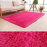PAGISOFE Ultra Soft Area Rugs Girls Kids Bedroom Carpet Nursery Decor Living Room Rug Floor Mat 4' x 5.3',Hot Pink