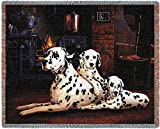 Pure Country 1122-T Dalmatian Pet Blanket, Various Blended Colorways, 53 by 70-Inch