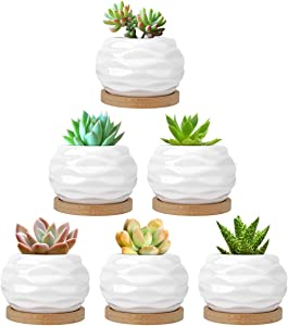 Luxspire Succulent Pots Set of 6, White Ceramic Water Pattern Mini Succulent Flower Plant Pot, Cactus Planter Container with Hole & Bamboo Tray for Garden Home Office Desk Decoration, Ideal Gifts